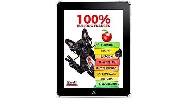 100% Bulldog Francés: La Guía del Bulldog Francés | Frenchiemania ...