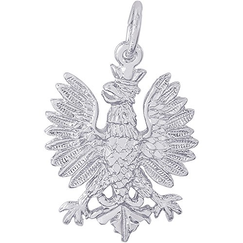 - Rembrandt Charms Sterling Silver Polish Falcon Charm (22 x 19 mm)