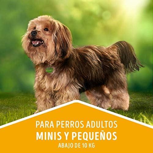 Comida para Perros Adultos, Dog Chow, Razas Minis y Pequeñas, 7.5 kg 8