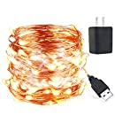 innotree LED String Lights, USB Plug in Fairy Lights, 33 ft 100 LED Copper Lights, Starry Lights, Waterproof Decorative Lights for DIY Bedroom, Garden, Party, Wedding(UL Adapter, Warm White)
