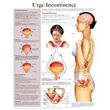 Urge Incontinence e-chart: Full illustrated