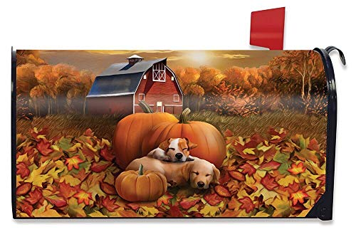 Briarwood Lane Welcome Fall Puppies Magnetic Mailbox Cover Pumpkin Barn Autumn Standard by Briarwood Lane