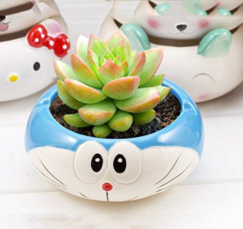 YOURNELO Cute Ceramic Cartoon Character Plant Flower Pot Succulent Planters Vase -