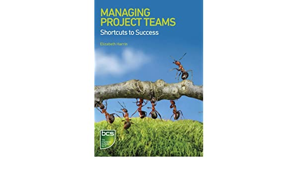 Shortcuts To Success: Project Management in the Real World • Girl's Guide to Project Management