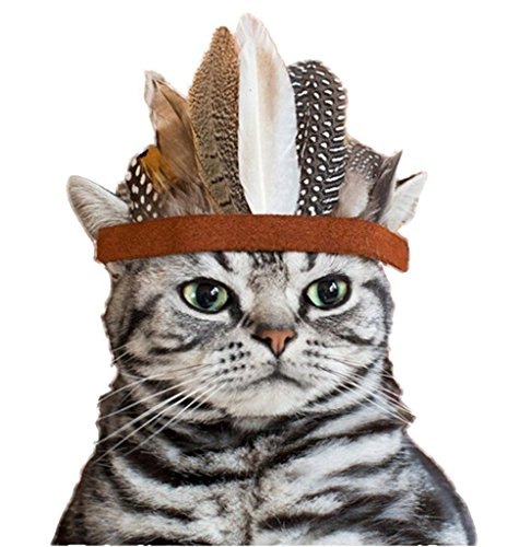 [Fascinator Headpiece Women Girl Pet Dog Cat Costume Headband Party Indian Style Feather Eagle Crown] (Kentucky Derby Costumes For Dogs)