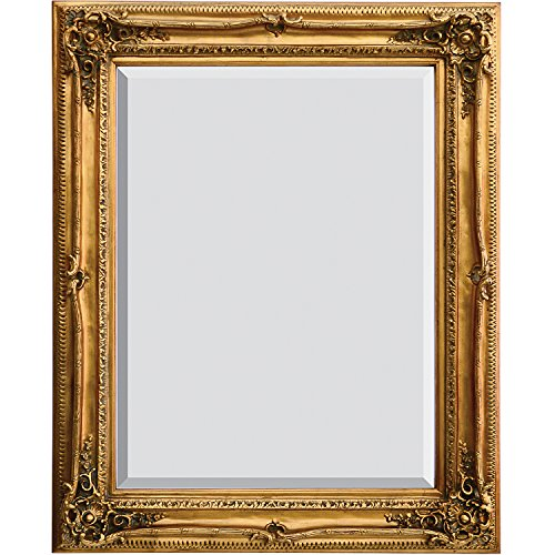 Finish Antique Wood Gold - AFD Home 10034061 Traditional Mirror, Antique Gold Finish