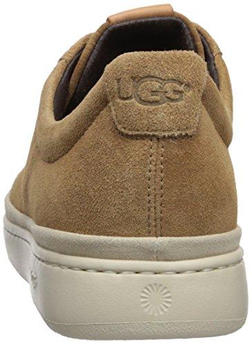 Chestnut Men's Low UGG Cali Lace Sneaker Xx1ww8qt