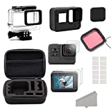 GreatCool GoPro Hero 5 6 Accessories Kit,Accessory Kit for Gopro Hero 5 6 with Travel Case,Housing Case, Filter,Tempered Glass Protective Film, Lens Cover,Silicone Protective Case, Anti Fog Inserts