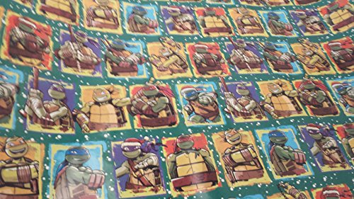 Christmas Wrapping Teenage Mutant Ninja Turtle Santa Hat Holiday Paper Gift Greetings 1 Roll Design Festive Wrap TMNT Square Green