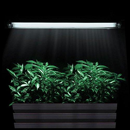 T5 HO Indoor Aquarium Hydroponic Fluorescent Grow Veg