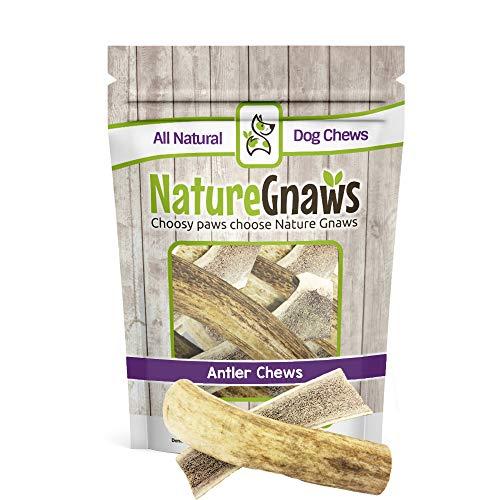 Rawhide Elk - Nature Gnaws Premium Usa Elk Antler Dog Chews 5-8 Inch (3 Pack)