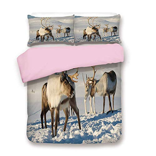 (Pink Duvet Cover Set,FULL Size,Reindeers in Natural Environment Tromso Northern Norway Caribou Antler Wildlife Decorative,Decorative 3 Piece Bedding Set with 2 Pillow Sham,Best Gift For Girls Women,)