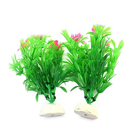 2 Stück Wasserpflanzen Schwimmpflanzen Aquarium Wasserflora 4.5*10*15cm