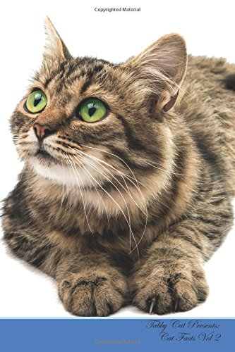 tabby-cat-presents-cat-facts-workbook-tabby-cat-presents-cat-facts-workbook-with-self-therapy-journalling-productivity-tracker-with-self-therapy-productivity-tracker-workbook-volume-2