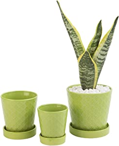 "BUYMAX Succulent Planter –3""+4""+5"" inch Ceramic Flower Pot with Drainage Holes and Ceramic Tray - Gardening Home Desktop Office Windowsill Decoration Gift Set 3 - Plants NOT Included"