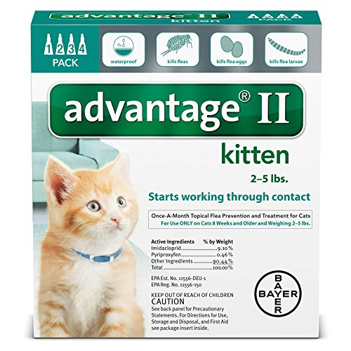 advantage flea for kittens - 4