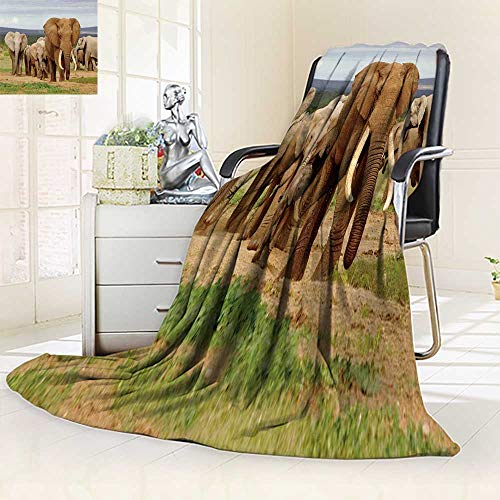 (YOYI-HOME Luxury Collection Ultra Soft Plush an Elephant Herd led by a Magnificent Tusker Bull at a Waterhole in theaddo Elephant National All-Season Throw/Bed Blanket/79 W by 59