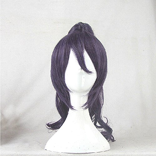 Akuma Costume Wig (Akuma no Riddle Takechi Otoya Grey Purple Cosplay Costume Wig + 1 Ponytails)