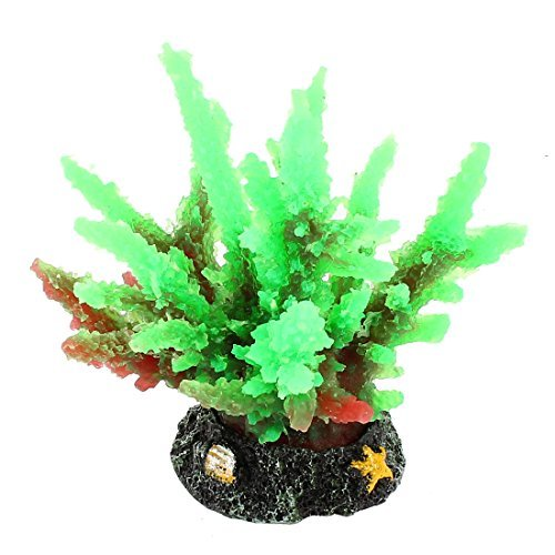 Amazon.com : eDealMax De cerámica a Base de silicona acuario Coral 4, 1 pulgadas High Green : Pet Supplies