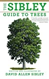 img - for The Sibley Guide to Trees book / textbook / text book