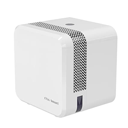 Mini Dehumidifier Electric Ultra Quiet 650ML Home Dehumidifier Auto Off  Compact And Perfect For