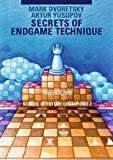 Secrets Of Endgame Technique: School Of Future Champions Vol. 3 (dvoretsky School Of Future Chess Champions)-Mark Dvoretsky Artur Yusupov