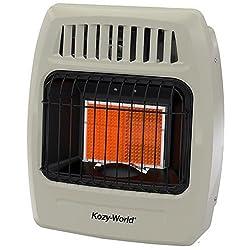 World Marketing Of America World Mktg Of Americaimport Kwn209 1 Plaque 6000 Btu Gas Wall Heater