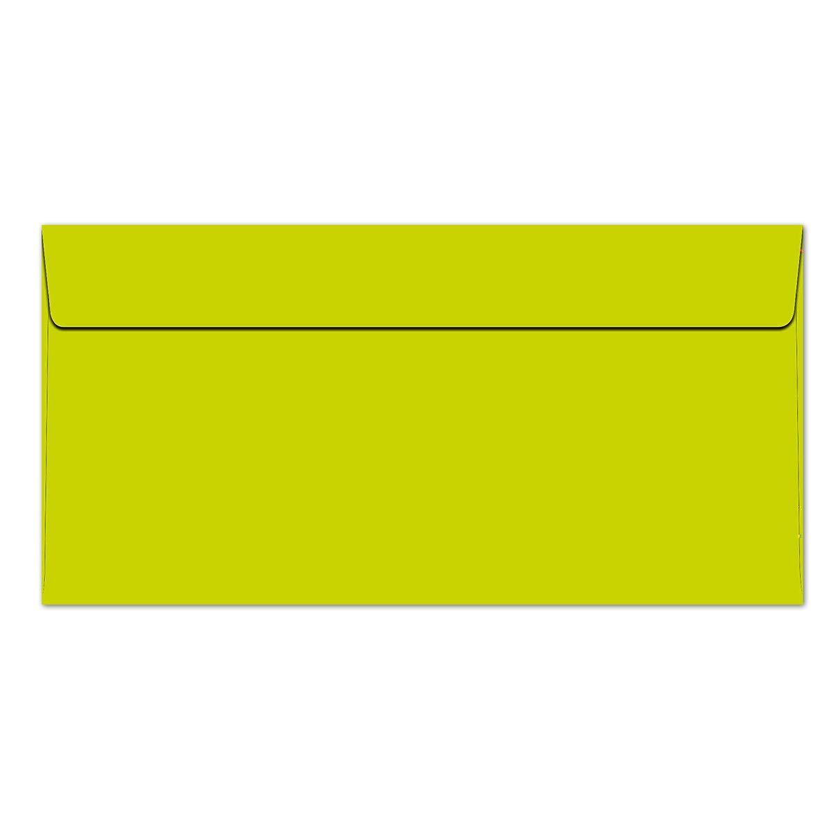 /QUALIT/À marca: Colore froh Buste DIN lungo/ /100/G//M/²/ /QUALIT/À PREMIUM/ /110/X 220/mm/ /Molto Resistente/ /striscia adesiva/