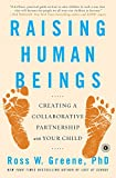 img - for Raising Human Beings: Creating a Collaborative Partnership with Your Child book / textbook / text book