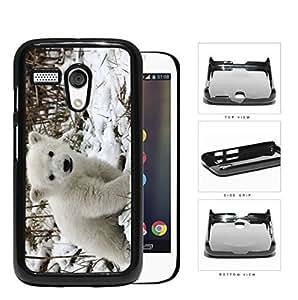 Cute Baby Polar Bear Animal in White Snow Hard Snap on Phone Case Cover Motorola Moto G