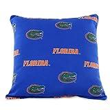 College Covers FLOODP Florida Gators Outdoor Decorative Pillow, 16'' x 16'', Blue