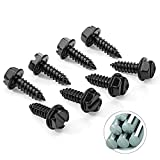 GLISTON License Plate Screws Fastener