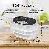 VIVOHOME Mini Digital 9-12 Egg Incubator Poultry
