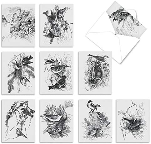 10 Assorted 'Wing Notes' Thank You Cards with Envelopes 4 x 5.12 inch, All Occasion Cards Featuring Black and White Bird Illustrations, Stationery for Weddings, Baby Showers, Mother's Day M6475TYG