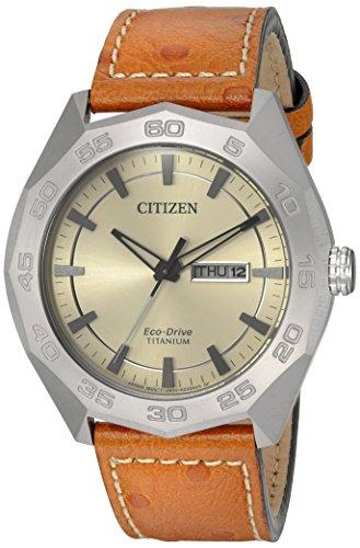 Citizen Quartz Titanium Leather Casual