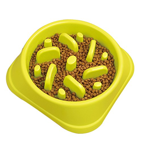 STARUBY Slow Feeder Dog Bowl, Slow Feed Dog Bowl Dog Food Bowls to Slow Down Eating Eco-Friendly Medium Size Green (Best Food To Feed A Pitbull Puppy)