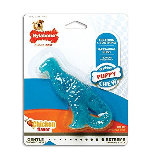 Nylabone Dinosaur Dental Teething Puppies product image
