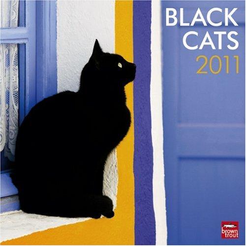 2010 Large Wall Calendar - Black Cats 2011 Square 12X12 Wall Calendar (Multilingual Edition)