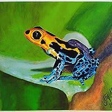 Pintura en óleo - Rana amarilla y azul