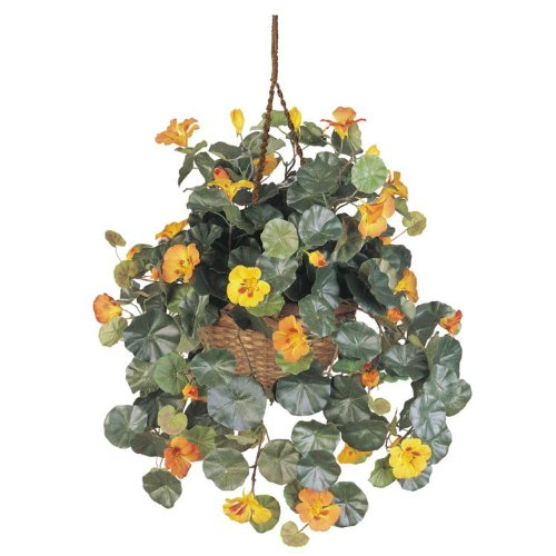 Nearly Natural Home Decorative Nasturtium Silk Hanging (Nasturtium Hanging Basket)