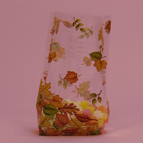 Autumn Leaves Clear Cello Party Bags - 20 Pack -