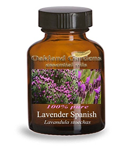 LAVENDER SPANISH Essential Oil (30 mL Euro Dropper) - 100% PURE Therapeutic Grade Essential Oil - Lavandula stoechas - Essential Oil By Oakland Gardens
