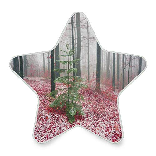 Night Light Beech Forest Colorful The Fallen Leaves Lying On Ground Plug-in LED Warm White Star Pentagram Shaped Nightlight for Bedroom Bathroom Hallway Stairways Decorative
