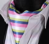 SetSense Mens Stripe Jacquard Woven Self Cravat Tie Ascot