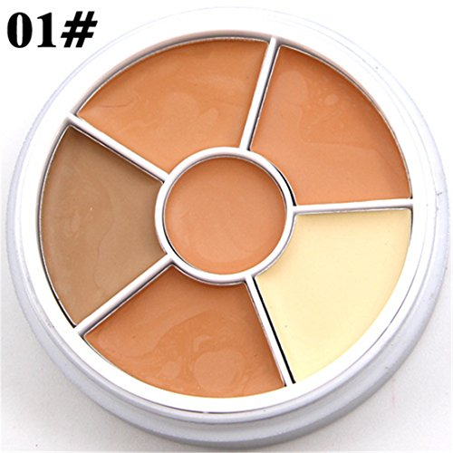 Pure-Vie-6-Colors-Concealer-Camouflage-Makeup-Palette-Contouring-Kit-for-Salon-and-Daily-Use