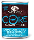 Wellness Grain-Free Canned Dog Food for Adult Dogs, CORE Salmon/Whitefish/Herring Recipe, 12-Pack of 12-1/2-Ounce Cans, My Pet Supplies