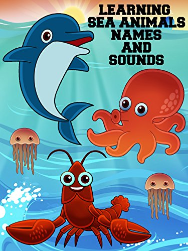 Learning Sea Animals Names And Sounds -