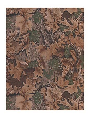 Amazoncom York Wallcoverings Wd4140 Lake Forest Lodge Real Tree