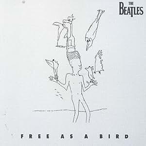 free as bird