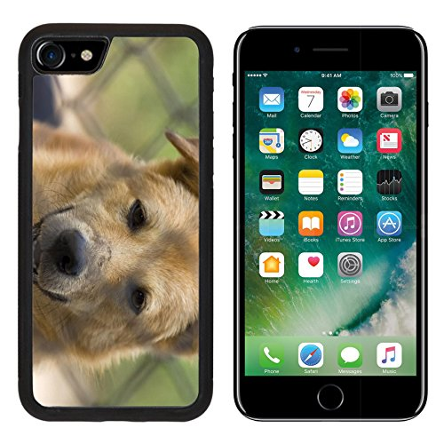 Price comparison product image MSD Premium Apple iPhone 7 Aluminum Backplate Bumper Snap Case iPhone7 Brown dog close up thai Image ID 23980006